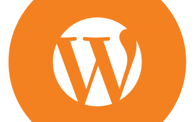 3 Basic Questions for Your WordPress Developer