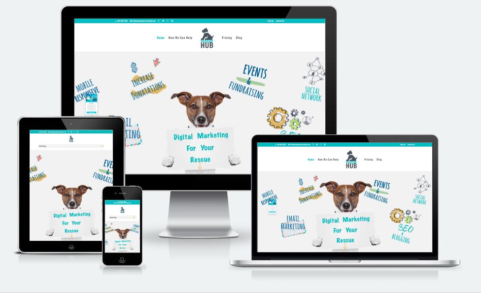 web design, divi, wordpress